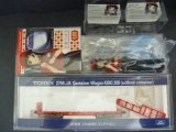 Nゲージ(1/150) 鉄道むすめコンテナコレクション(20ft) 貨車 フィギュアセット 平泉つばさ