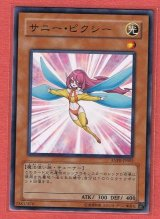 ANPR-JP002 サニー・ピクシー光ノーマル