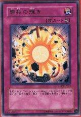 ANPR-JP074 鋼核の輝き罠 レア